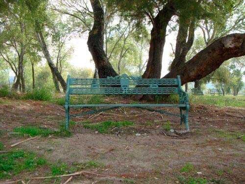 banco-en-el-parque-de-los-sifones_28394553