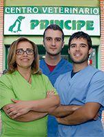 principe-veterinariojpg